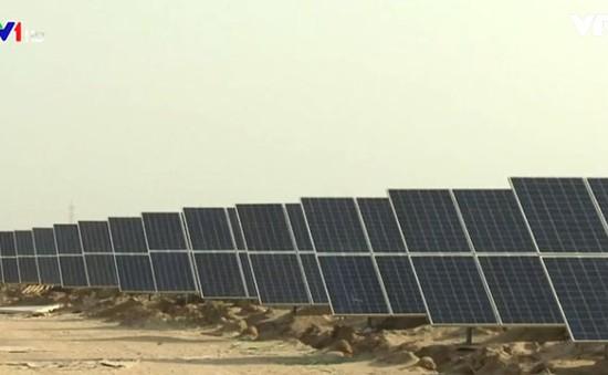 Phát triển năng lượng tái tạo là xu thế toàn cầu