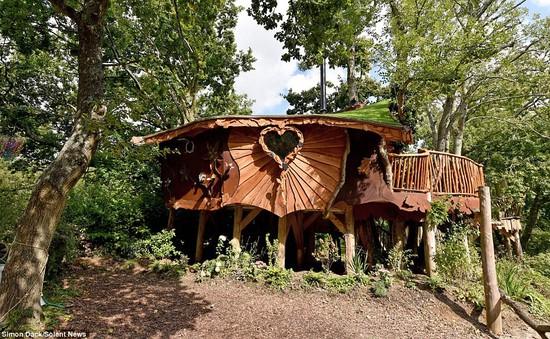 Độc đáo ngôi nhà cây tiện nghi giữa rừng