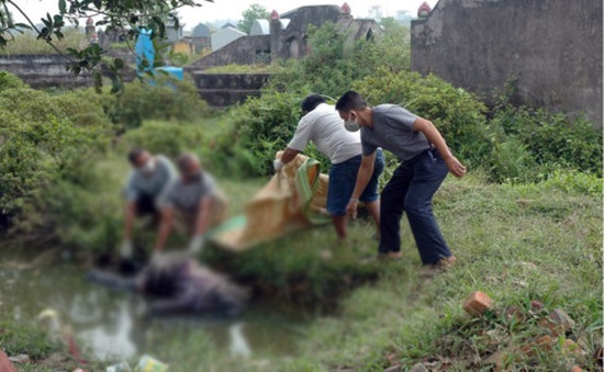 Hưng Yên: Phát hiện xác chết đang phân hủy trong ao