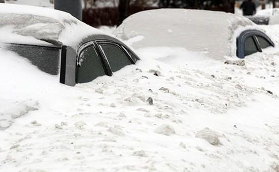 Gió lớn, tuyết dày ảnh hưởng nghiêm trọng tới đời sống người dân châu Âu
