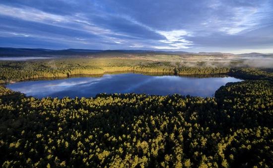 Cảnh mùa thu tuyệt đẹp ở Scotland nhìn từ trên cao
