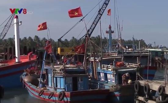 Quảng Nam siết chặt quản lý khai thác hải sản