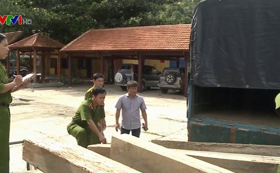 Quảng Nam ngăn chặn nạn vận chuyển gỗ lậu bằng xe máy
