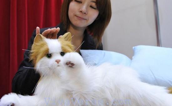 Mỹ: Robot mèo dành cho người cao tuổi