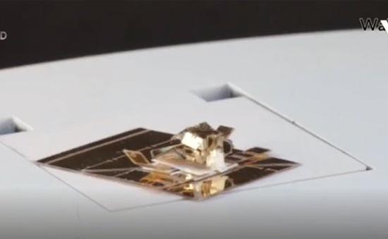 Primer - Robot origami có thể biến hình