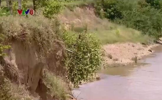 Ninh Thuận chậm đầu tư xây dựng kè chống sạt lở dọc các bờ sông