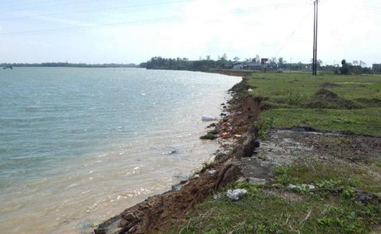 Quảng Trị: Sạt lở đê biển nghiêm trọng, ảnh hưởng đời sống người dân