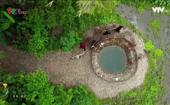 Vẻ đẹp bình dị ở làng văn hóa Thái Hải