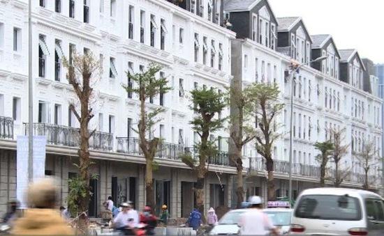 Bát nháo hoạt động môi giới bất động sản
