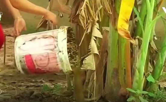 Sáng chế thùng ủ ga sinh học chống lũ lụt