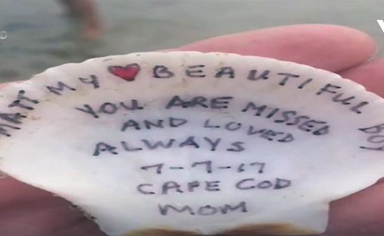 Tìm thấy chiếc vỏ sò có thông điệp đặc biệt