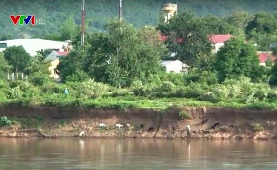 Hơn 100 hộ dân vùng sạt lở sông Ba cần được di dời