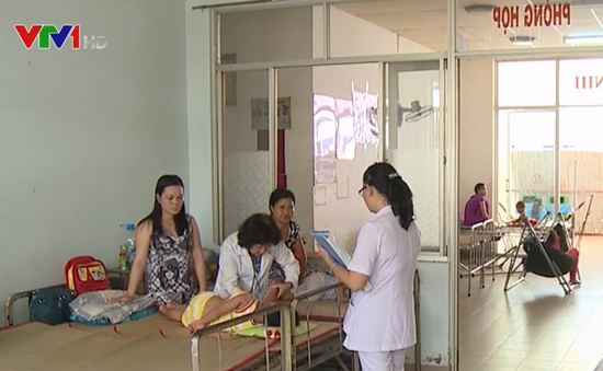 Nguy cơ dịch sốt xuất huyết lan rộng tại ĐBSCL