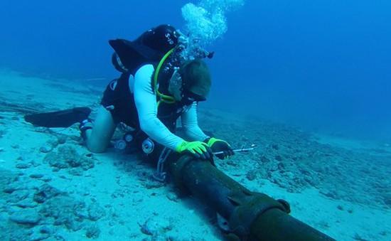 Internet bị ảnh hưởng do sự cố 3 tuyến cáp quang biển