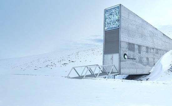 Ngân hàng hạt giống Svalbard bị bịt kín lối vào do băng tan