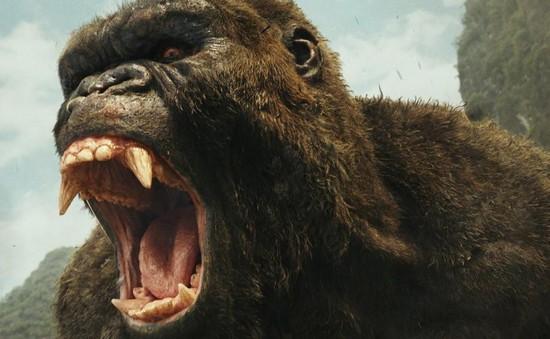 Chúa tể đảo đầu lâu khổng lồ và hung bạo hơn trong Kong: Skull Island