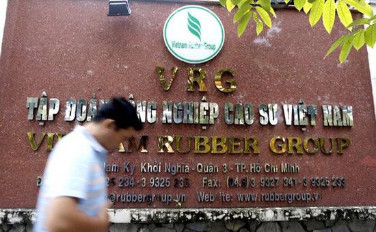 Tập đoàn Công nghiệp Cao su Việt Nam (VRG) chưa tìm được nhà đầu tư chiến lược