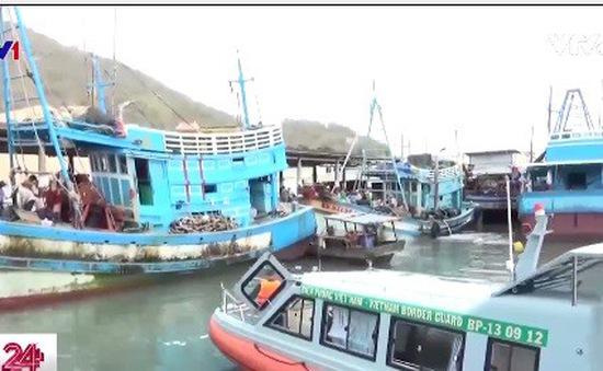 Bà Rịa - Vũng Tàu: Còn khoảng 1.500 tàu cá chưa vào bờ tránh bão