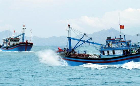 Gia tăng các vụ tàu cá khai thác trái phép ở vùng biển nước ngoài