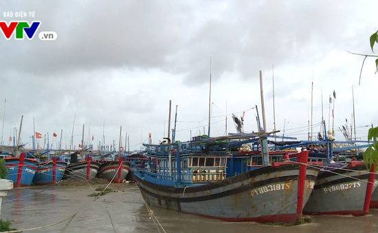 Phú Yên: Ngư dân sắp xếp tàu thuyền tránh bão