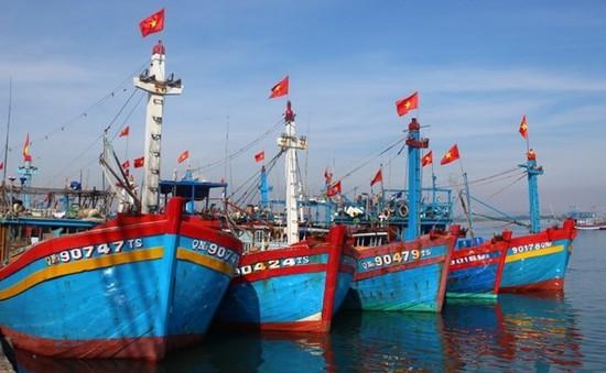 Thủ tướng chỉ thị ngăn chặn khai thác hải sản bất hợp pháp