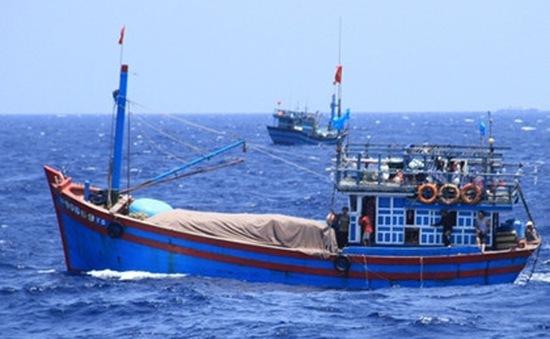 Cảnh báo tình trạng ngư dân bị bắt giữ do xâm phạm lãnh hải