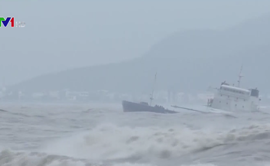 Bình Định: 2 tàu hàng bị chìm được phê duyệt trục vớt
