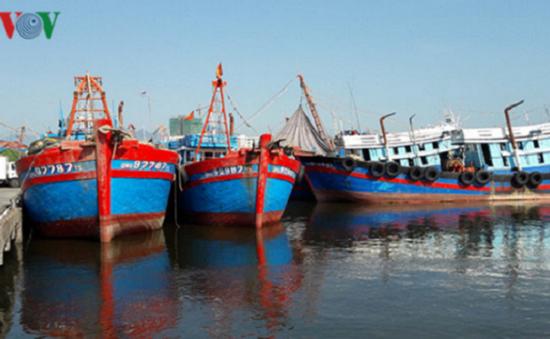 Tỉnh Sóc Trăng tiếp tục cấm tàu thuyền ra khơi