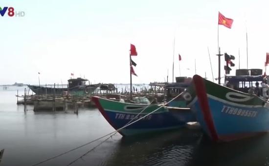 TT-Huế: Nâng cao kiến thức về bảo hiểm tàu cá cho ngư dân
