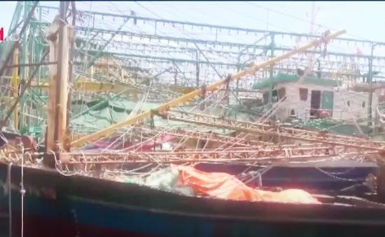 Thống nhất phương án sửa chữa tàu vỏ thép tại Bình Định