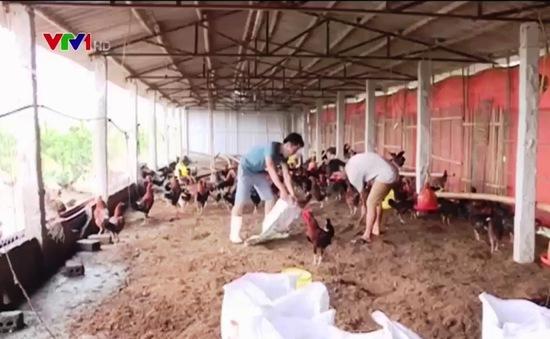 Thanh Hóa khắc phục môi trường sau ngập lụt