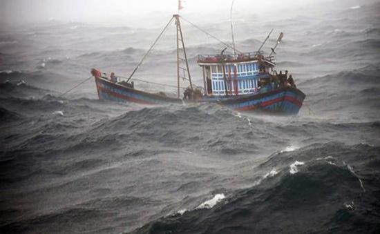 Quân chủng Hải Quân đưa 35 ngư dân gặp nạn trên biển vào bờ