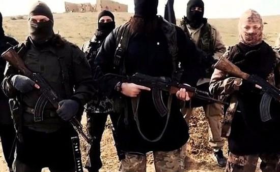 Chuyên gia Mỹ nhận định chưa thể tiêu diệt hoàn toàn IS