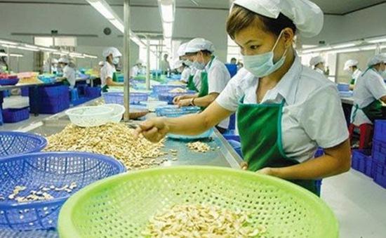 Năm thứ 12 liên tiếp Việt Nam đứng đầu thế giới về xuất khẩu điều