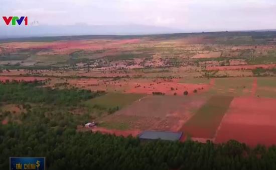 Bình Thuận: Lúng túng trong việc quy hoạch tập trung các dự án titan