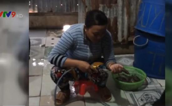 Bắt quả tang 2 vụ bơm tạp chất vào tôm bằng máy ở Bạc Liêu