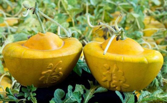 Nhà vườn ĐBSCL chuẩn bị trái cây độc, lạ phục vụ Tết