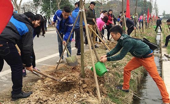 Hà Nội phấn đấu trồng mới 350.000 cây xanh trong năm 2018