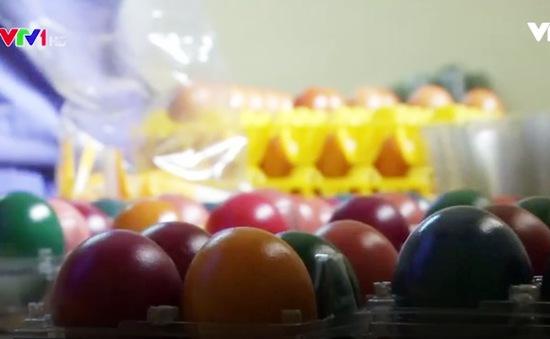 Trứng luộc nhiều màu sắc ở Nigeria