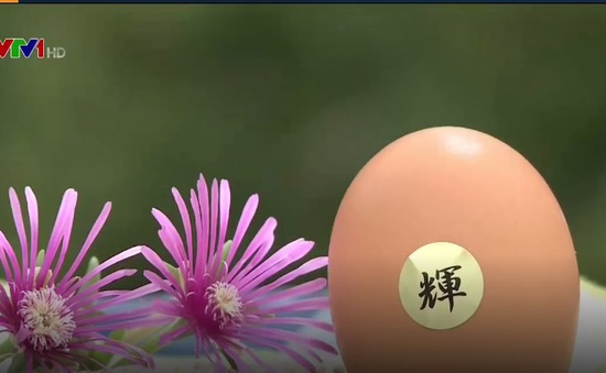 Trứng gà chất lượng cao tại Nhật Bản có giá 100.000 đồng/quả