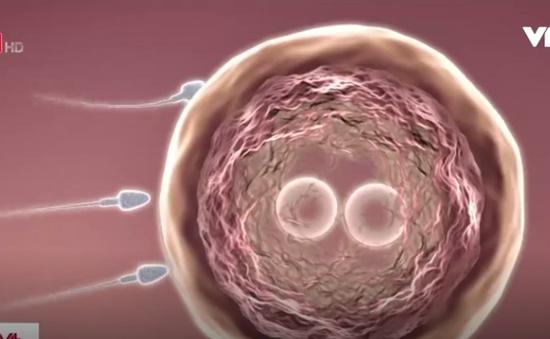 Tiếp tục có bầu khi đang mang thai: Nghe tưởng đùa nhưng có thật