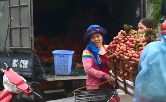 Chinh phục các thị trường khó tính, trái vải Việt Nam hết lo về đầu ra