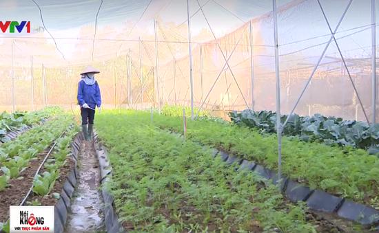 Mô hình khép kín trang trại - cửa hàng thực phẩm sạch