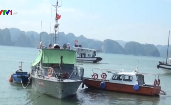 Quảng Ninh: Va chạm liên hoàn trên biển, tàu chở than bị chìm