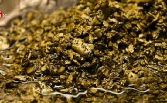 Thụy Sỹ thất thoát lượng vàng trị giá gần 2 triệu USD qua đường nước thải mỗi năm
