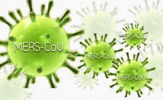 Virus MERS-CoV có thể lây qua đường ruột