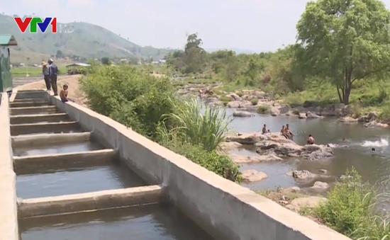 Đăk Lăk: Doanh nghiệp tự ý xây đập, ngăn suối để nuôi cá