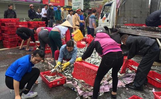 Hà Tĩnh: 2 tấn cá đổ giữa đường, người dân ra gom giúp tài xế