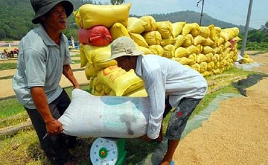 Bộ NN& PTNT kiểm tra tình hình tiêu thụ lúa, gạo ở ĐBSCL