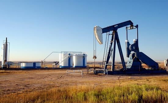 Các hãng dầu Mỹ đẩy mạnh xuất khẩu sang thị trường châu Á
